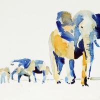 Elefanten, 2016
