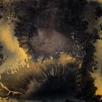 Geomorph II, 2010