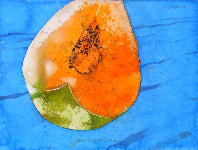 Melone, 2011